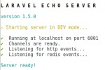 Laravel Echo socket.io - https 443 - ReverseProxy